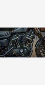 2019 Harley-Davidson Sportster Iron 883 for sale 201006393