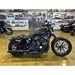 2019 Harley-Davidson Sportster Iron 883 for sale 201048903