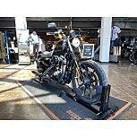 2019 Harley-Davidson Sportster Iron 883 for sale 201052362