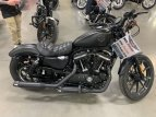 2019 Harley-Davidson Sportster Iron 883 for sale 201054156