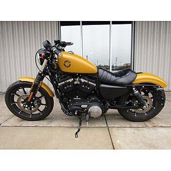 2019 Harley-Davidson Sportster for sale 201056088