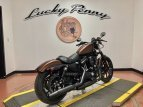 2019 Harley-Davidson Sportster for sale 201069824