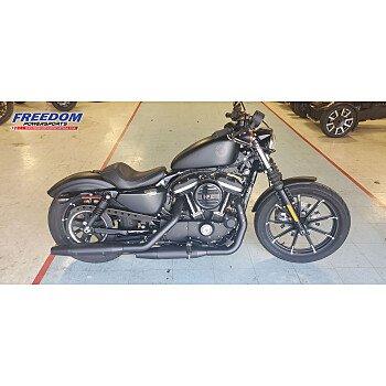 2019 Harley-Davidson Sportster Iron 883 for sale 201087925