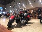 2019 Harley-Davidson Touring Road King for sale 201103987
