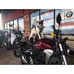 2019 Honda CB300R for sale 201144959
