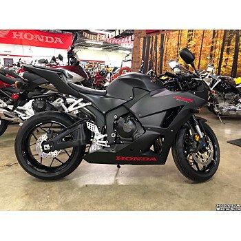 2019 Honda CBR600RR for sale 200898738