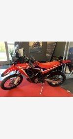 2019 Honda CRF250L for sale 200980908