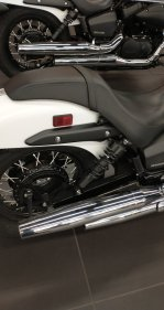 2019 Honda Shadow Phantom for sale 200922926