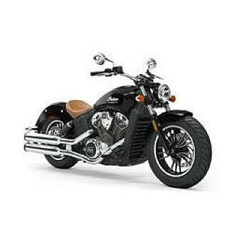 2019 Indian Scout for sale 200623235