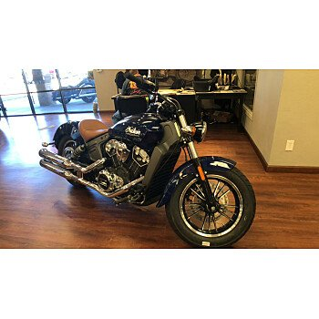 2019 Indian Scout for sale 200678126