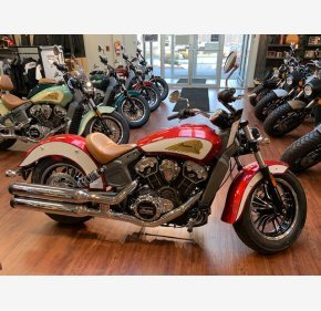 2019 Indian Scout for sale 200653347