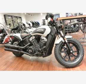 2019 Indian Scout for sale 200665495