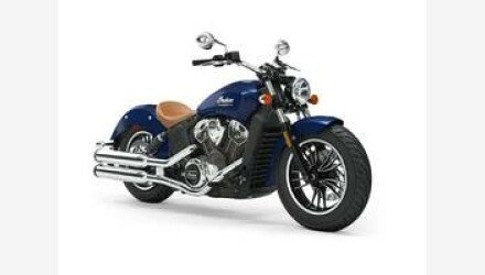 2019 Indian Scout for sale 200668819