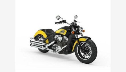 2019 Indian Scout for sale 200699062