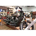 2019 Indian Scout for sale 200699459