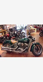 2019 Indian Scout for sale 200754356
