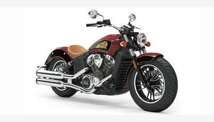 2019 Indian Scout for sale 200830542