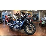 2019 Indian Scout for sale 200835676
