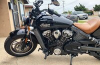 2019 Indian Scout for sale 200933079