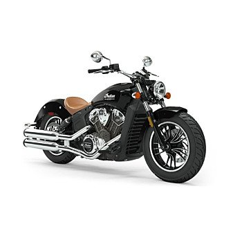 2019 Indian Scout for sale 200986373