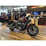 2019 Indian Scout for sale 201168098