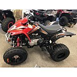 2019 Kymco Mongoose 270 for sale 200669534