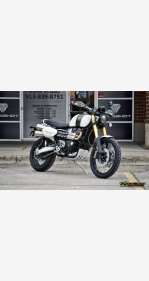 2019 Triumph Scrambler for sale 200723736