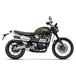 2019 Triumph Scrambler for sale 200825757