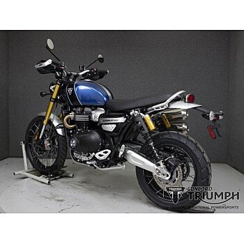 2019 Triumph Scrambler for sale 200969308