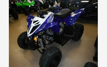 2019 Yamaha Raptor 90 for sale 200648986
