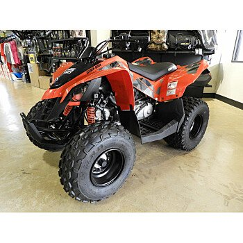 2020 Can-Am DS 90 for sale 200802109
