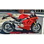2020 Ducati Panigale V4 for sale 200935684