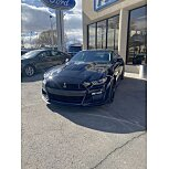 2020 Ford Mustang for sale 101587601