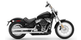 2020 Harley-Davidson Softail Standard specifications