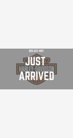 2020 Harley-Davidson Softail Slim for sale 200868015