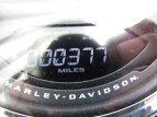2020 Harley-Davidson Softail for sale 201074837