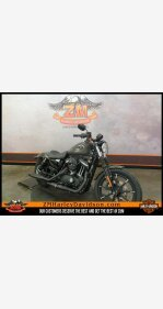 2020 Harley-Davidson Sportster Iron 883 for sale 200800135
