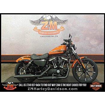 2020 Harley-Davidson Sportster Iron 883 for sale 200800138