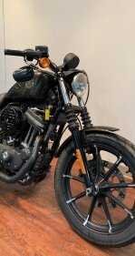 2020 Harley-Davidson Sportster Iron 883 for sale 200878613