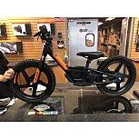 2020 Harley-Davidson Sportster for sale 200924317