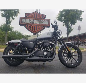 2020 Harley-Davidson Sportster Iron 883 for sale 200933913