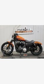 2020 Harley-Davidson Sportster Iron 883 for sale 200950548