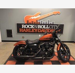 2020 Harley-Davidson Sportster Iron 883 for sale 200967405