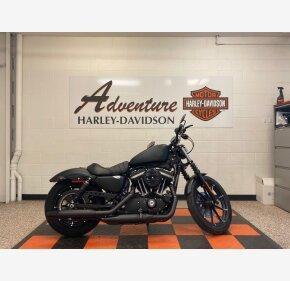 2020 Harley-Davidson Sportster Iron 883 for sale 200967408