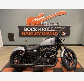 2020 Harley-Davidson Sportster Iron 883 for sale 200967527