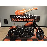 2020 Harley-Davidson Sportster Iron 883 for sale 200968284