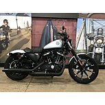 2020 Harley-Davidson Sportster Iron 883 for sale 201003678