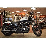 2020 Harley-Davidson Sportster Iron 883 for sale 201005552
