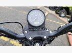 2020 Harley-Davidson Sportster for sale 201023841