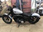 2020 Harley-Davidson Sportster Iron 883 for sale 201024470